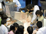 Японские избиратели отдали победу оппозиции
