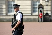 Британских солдат-неонацистов арестовали по подозрению в подготовке терактов