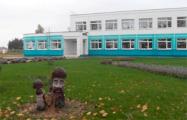Коронавирус выявлен в школе Пинского района