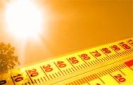 Завтра - жара до 33 градусов