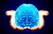 Ученые нашли связь между лицом и формой мозга человека