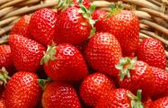 Минчане ежедневно покупают на Комаровском рынке до 40 тонн клубники