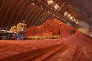 Индии предложили купить часть акций «Беларуськалия»