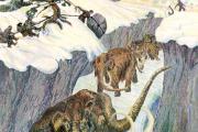 Вину в вымирании мамонтов перенесли с охотников на климат