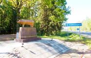 В Климовичах установили странный памятник