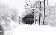 Минчане проехали на поезде и поучаствовали в «игре на выживание»