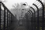 Немецкая прокуратура займется делами 30 нацистских преступников