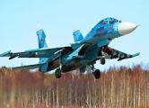 70 российских самолетов отработают ковровые бомбардировки в день выборов в Украине