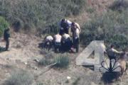 Полицейские в Калифорнии избили упавшего с лошади обездвиженного конокрада