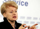 Грибаускайте о «плюшевом десанте»: Литовские службы не должны лгать