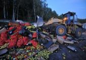 В России «белорусские яблоки» уничтожили бульдозерами