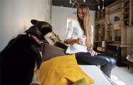 В Минске появится первое кафе для посетителей с собаками