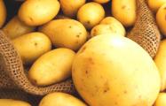 В Беларуси есть район, где колхозы не посадили ни одной картофелины
