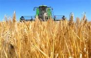 Колхозную землю удобрили почти половиной бюджета