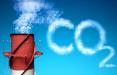 Германия хочет достичь нулевых выбросов парниковых газов на 5 лет раньше, чем ЕС