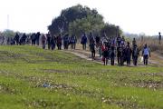 Сотни мигрантов вырвались из лагеря беженцев около венгеро-сербской границы