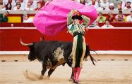 В Испании прошли массовые протесты против корриды