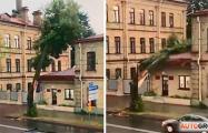 Ливень в Гродно: град диаметром 3 см и падающие на дома деревья