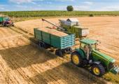 Белстат отмечает увеличение производства сельхозпродукции в Беларуси