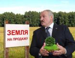 Распродажей земли будет заниматься лично Лукашенко