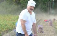 Три причины, почему не стоит верить словам Лукашенко о приватизации