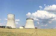 Литва закупает йод из-за ввода БелАЭС