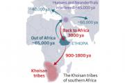 У африканцев нашли европейские корни