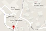 Полиция Сингапура застрелила водителя у места проведения форума по безопасности