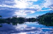 Ученые обнаружили в Амазонии древние поселения в виде циферблата часов