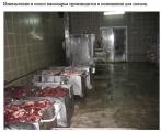 Россельхознадзор о белорусских мясокомбинатах: антисанитария и «непонятное сырье» (Фото)
