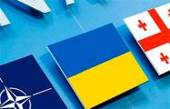 НАТО усилит политическую и практическую поддержку Украины и Грузии