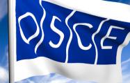 На сессии ОБСЕ в Минске раскритиковали политику Лукашенко