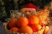 Дед Мороз стал бесплатно развозить белорусам технику с мандаринами