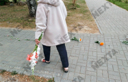 В Фаниполе 75-летняя женщина выложила дорожку из цветов у исполкома