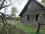 Переворот в настроениях: деревня возненавидела Лукашенко