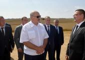 Лукашенко о погоде: Нас еще Господь пожалел