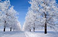 Завтра в Беларуси ожидается до -13 градусов