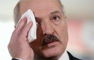 Лукашенко: Люди пытаются бросить камень в огород моих решений