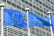 ЕС отказался связать введение миротворцев в Донбасс с отменой санкций