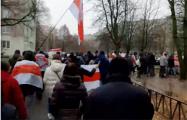 Внушительная колонна протестующих гуляла по Малиновке