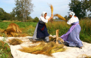 На Гомельщине тысячи женщин и студентов убирают лен за «спасибо»?