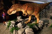 Ученые раскрыли секрет зубов тираннозавра