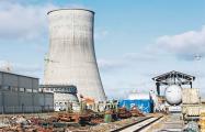 Павел Климкин: Остановить БелАЭС еще не поздно