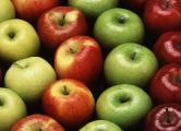 Молдова в 24 раза увеличила экспорт яблок в Беларусь
