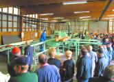 Рабочие «Бобруйского завода ДВП» остановили производство