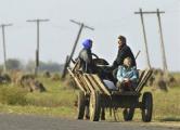 Лукашенко вернулся в свою деревню
