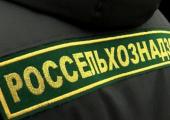 Белорусские предприятия боятся судиться с Россельхознадзором