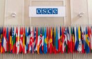 В ПА ОБСЕ призвали международное сообщество обратить внимание на ситуацию в Беларуси