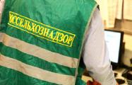 Россельхознадзор обвинил белорусских производителей вложном транзите