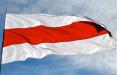 В Новополоцке партизаны вывесили национальный флаг